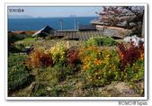 男木島:2013_1123_105514.jpg