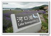 2015富士山伊豆靜岡流水帳:2014_0719_120457(1).JPG
