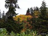 弥陀ヶ原立山カルデラ展望台:2012_1011_091344.JPG