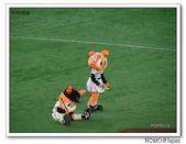 東京巨蛋看球:2014_0715_180530.JPG