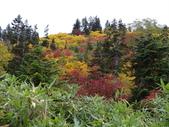 弥陀ヶ原立山カルデラ展望台:2012_1011_091428.JPG