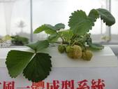 107.02.17 屏東熱帶農博: