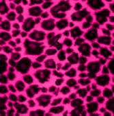 豹紋背景:256735456_x.jpg