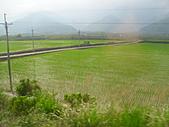 池上綠色田野:IMG_0831.JPG