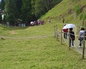 清境農場:IMG_0323.jpg
