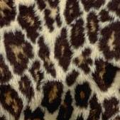 豹紋背景:256735463_x.jpg