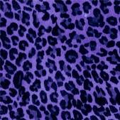 豹紋背景:256735406_x.jpg