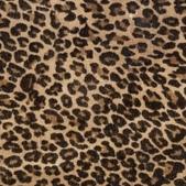 豹紋背景:256735372_x.jpg