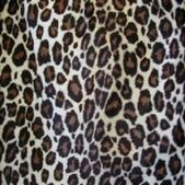 豹紋背景:256735357_x.jpg