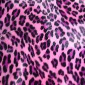 豹紋背景:256735435_x.jpg