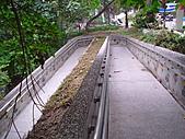 步道:IMG_0871.JPG