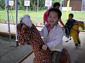 遊覽 2007 宜蘭綠色博覽會:可愛的馬