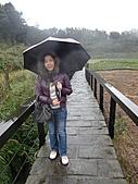 陽明山竹子湖 :CIMG1141.JPG