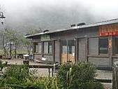 陽明山竹子湖 :CIMG1200.JPG
