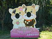 大黑松小倆口 愛情故事館:P1060364_大小.JPG