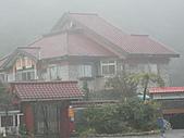 陽明山竹子湖 :CIMG1202.JPG