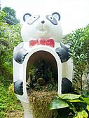 新竹縣 福祥仙人掌農園:在熊貓的肚子裡 可是還有很多株仙人掌呢