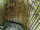 新竹縣南埔地區-麥客田園:入園先經過個長廊