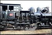 阿里山森林鐵路 - 蒸汽機車頭 與 檜木車箱  2014.01.27: