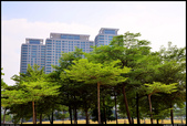 高雄市立美術館  2013.10.16: