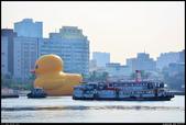 療傷系-黃色小鴉 光榮碼頭  2013.10.16: