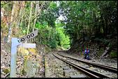 阿里山森林鐵路 - 木履寮車站  2013.12.29: