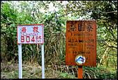 阿里山森林鐵路 - 梨園寮車站  2013.12.29: