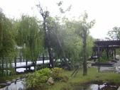 同協會續灘--新市某公園:1460176505.jpg