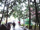 08.2/23 九族-夜櫻真的好美的啦!:1595624461.jpg