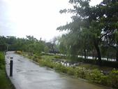同協會續灘--新市某公園:1460176513.jpg