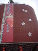 2008.2.9(初三)大湖採草莓:1943956040.jpg