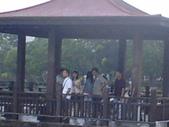 同協會續灘--新市某公園:1460176517.jpg