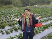 2008.2.9(初三)大湖採草莓:1943956043.jpg