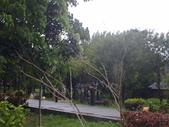 同協會續灘--新市某公園:1460176520.jpg