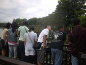 同協會續灘--新市某公園:1460176525.jpg