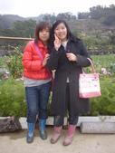 2008.2.9(初三)大湖採草莓:1943956001.jpg