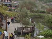 2008.2.9(初三)大湖採草莓:1943956057.jpg