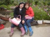 2008.2.9(初三)大湖採草莓:1943956061.jpg