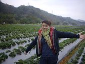 2008.2.9(初三)大湖採草莓:1943956063.jpg