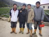 2008.2.9(初三)大湖採草莓:1943956009.jpg