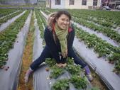2008.2.9(初三)大湖採草莓:1943956016.jpg