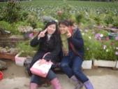 2008.2.9(初三)大湖採草莓:1943956019.jpg
