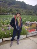 2008.2.9(初三)大湖採草莓:1943956020.jpg