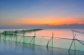 東石漁人碼頭~:DSC_6546.jpg