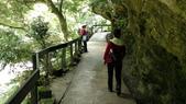 花東-砂卡礑溪步道:DSC04961.jpg