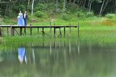 新山夢湖:_DSC3859.jpg
