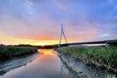 黃金社子橋~:_DSC1954.jpg