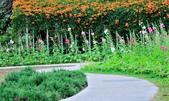 新生公園綠化園區:DSC_6689.jpg
