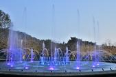 陽明山國家公園:_DSC6017.jpg