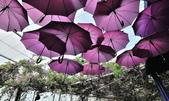 苗栗西湖鄉噢哈娜:DSC_0365.jpg
